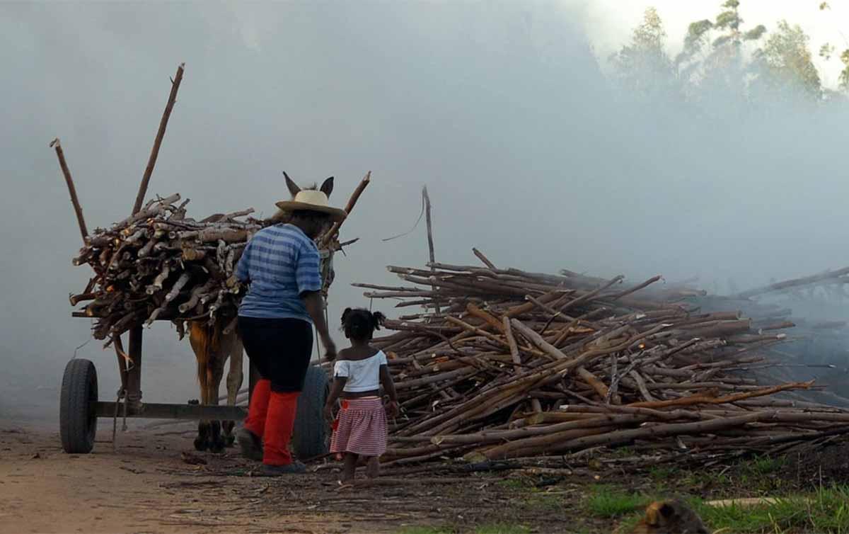 Imagem:CUT lança campanha pelo fim do trabalho infantil